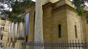 Adelaide Art Gallery - beautiful eucalyptus, beautiful limestone