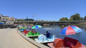 Plenty of paddle boats ready to go