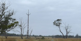 SA electrical poles - unfillled
