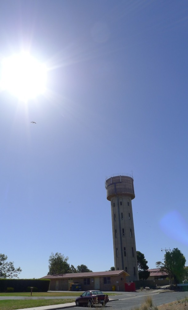 Water tower & Pelican at Tailem Bend