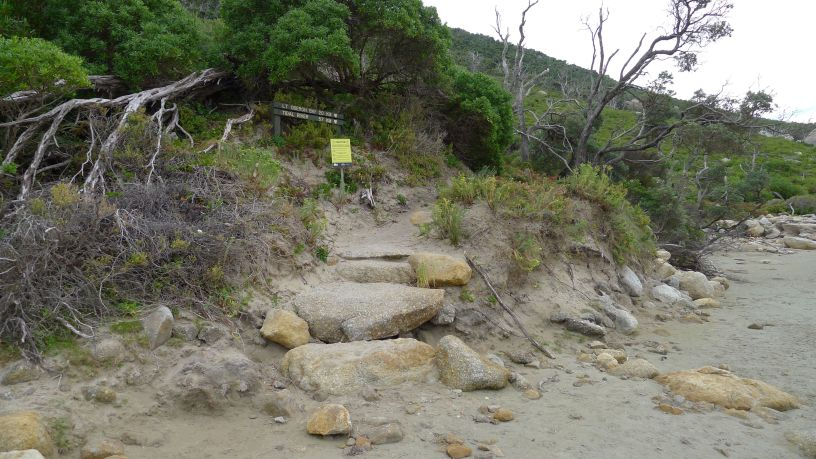 12/12 The start of the path around the headland back to Little Oberon Bay from Growler Creek
