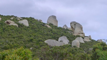 7/8 Realise that around the rocks are fully grown eucalyptus trees and you'll appreciate the size of these boulders