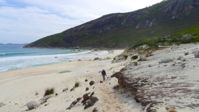 11/13 The path to Little Oberon Beach from the south