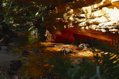 Sunlight reflecting off the creek gave a golden glow to the walls of the canyon